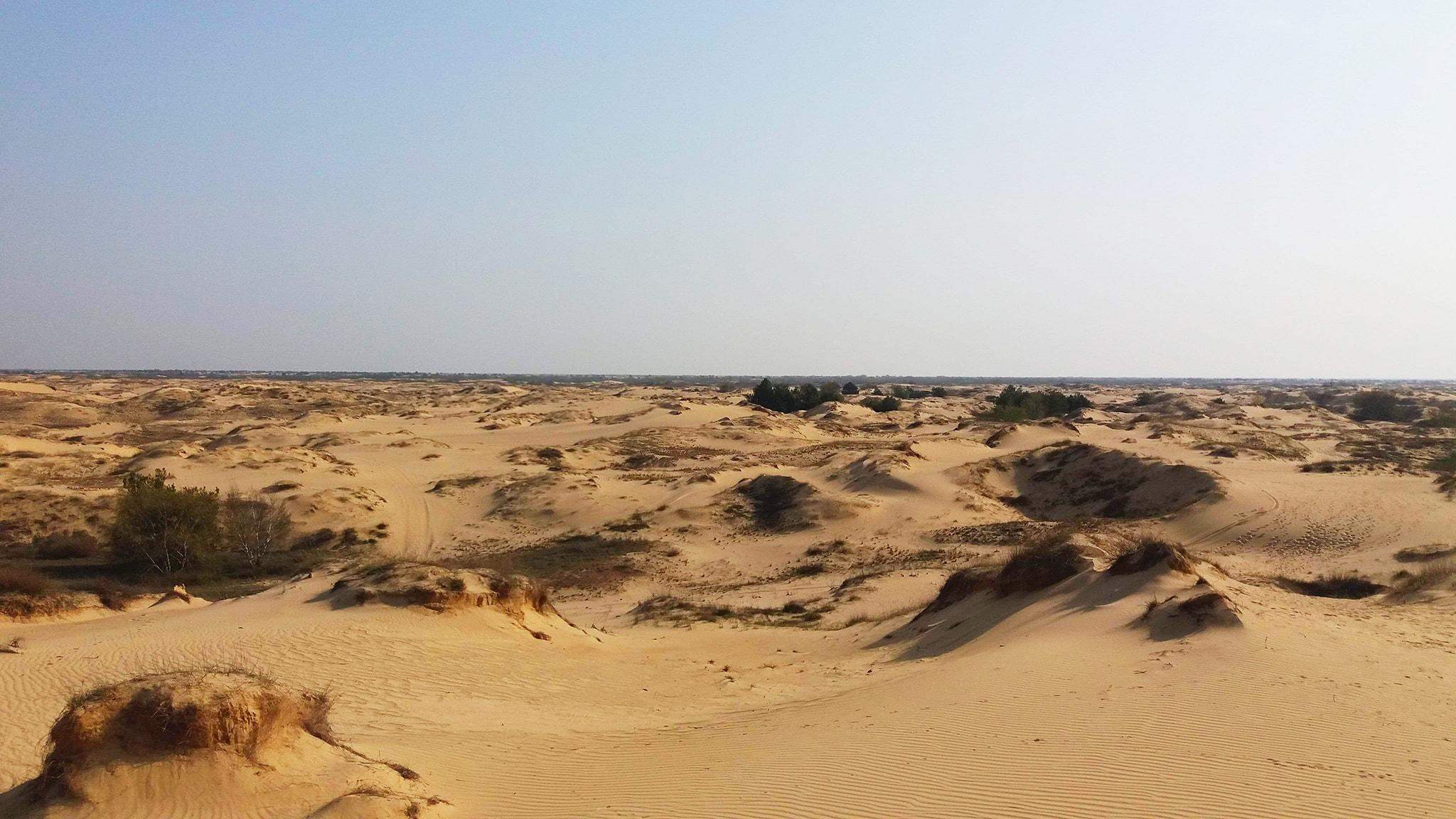 Природні дива Таврії (Олешківські піски)